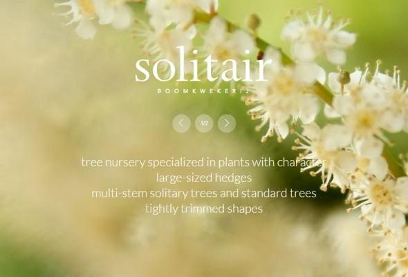 solitair6