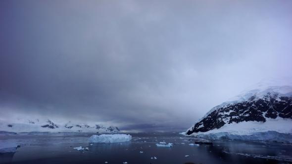 Neko Harbour, Antarctica 2016